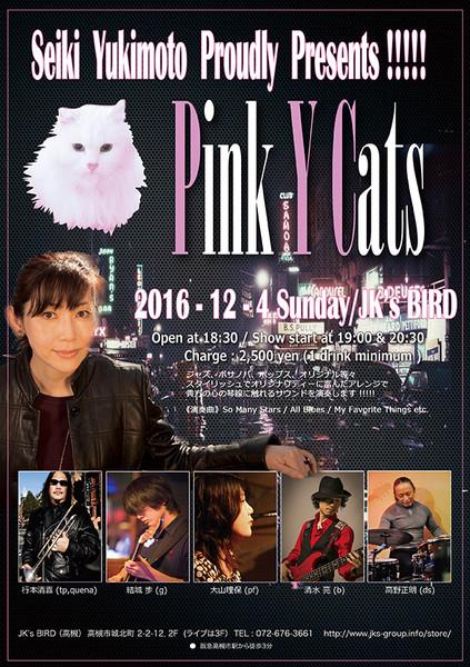 20161204pinkrushnifty